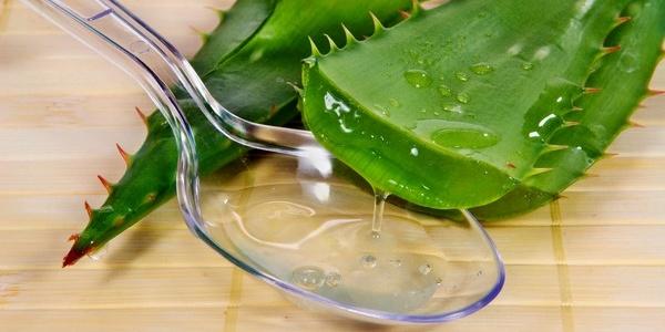 Регулярне зволоження шкіри соком алое запобіжить зморшки.