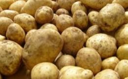 Калорійність картоплі - 80 ккал на 100 г