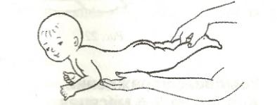 Положення плавця