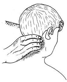 масаж задньої поверхні шиї