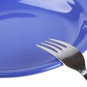 Принцип одноденного голодування