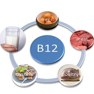 Вміст вітаміну B13 в продуктах